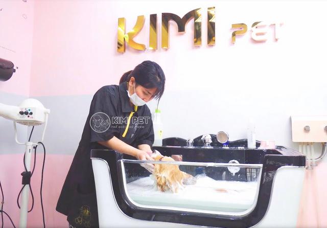 Dịch vụ tắm chó mèo trọn gói Kimipet