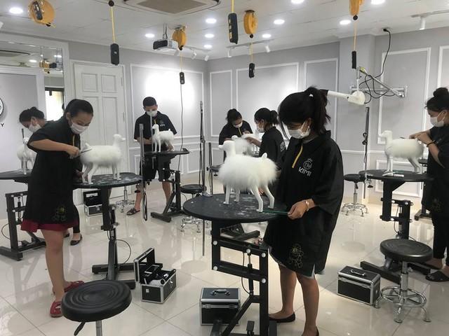 Bài thực hành cắt tỉa lông với chó giả của học viên Kimi Pet