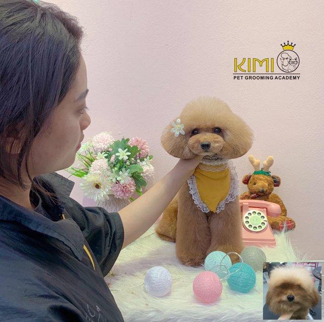 Sự đáng yêu, dễ thương của bé cún dưới bàn tay nghệ thuật của học sinh