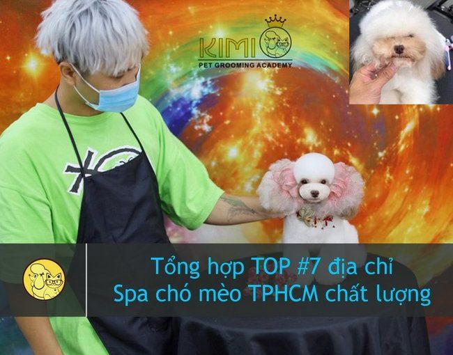 Dịch vụ spa chó mèo TPHCM tại Kimi Pet