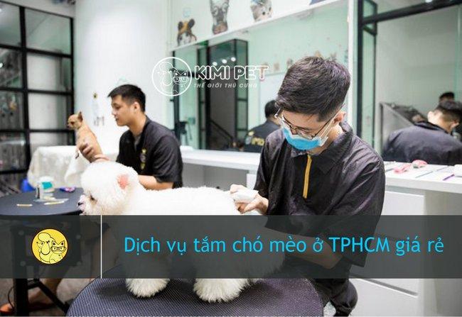 Tìm hiểu các dịch vụ tắm chó tại nhà TPHCM uy tín