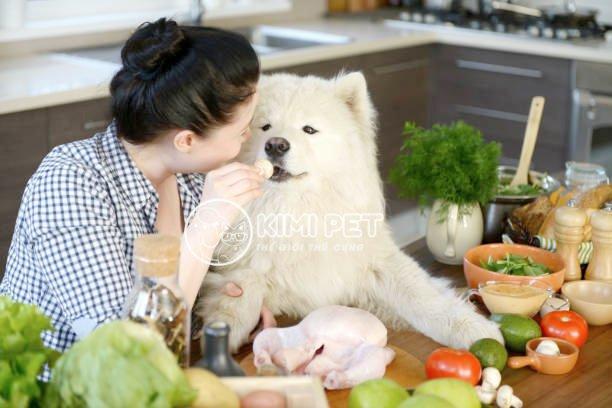 Thực phẩm tươi tự làm là tốt nhất cho chó